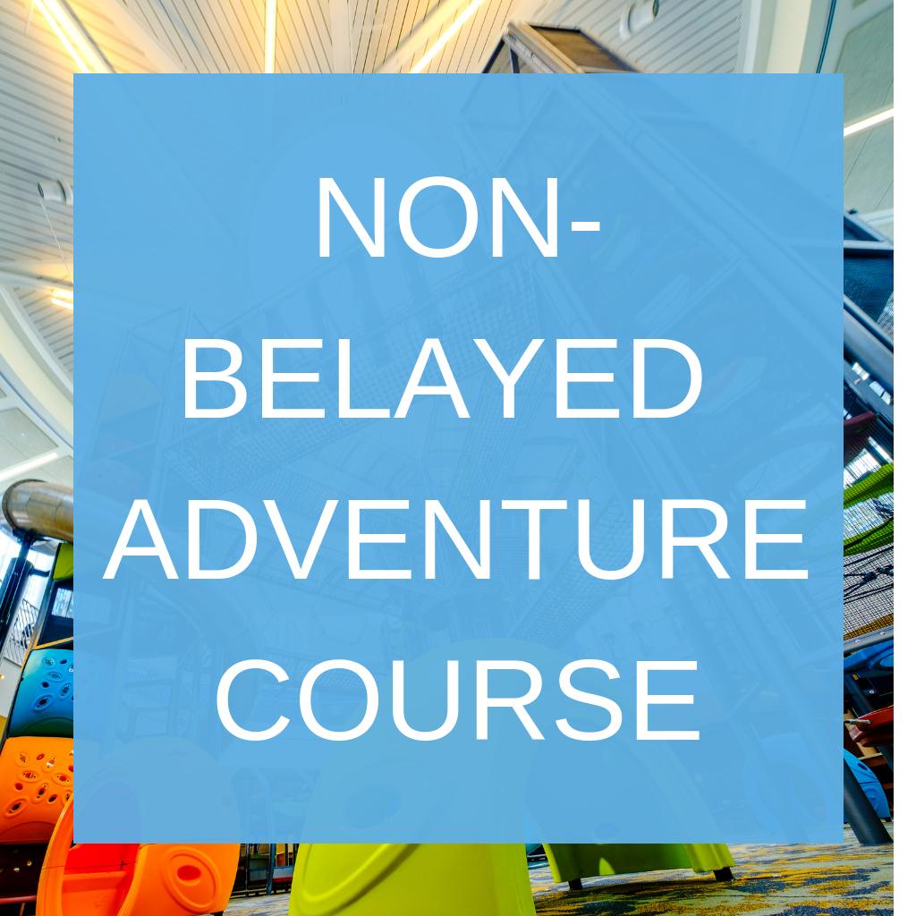 Non-belayed adventure course button